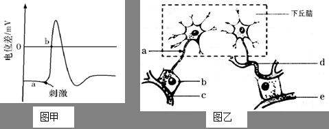 电流刺激电路图